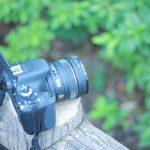 初心者が旅のカメラを考える。デジカメ、一眼、ミラーレスの特徴比較!