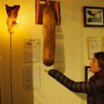 アイスランドのペニス博物館と、その後遺症